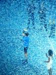 Djokovic confetti 2
